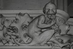 Ο τρελλός πίθηκος Στοκ φωτογραφία με δικαίωμα ελεύθερης χρήσης