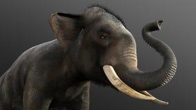 ο τρισδιάστατος ελέφαντας απεικόνισης απομονώνει στο μαύρο υπόβαθρο Στοκ Φωτογραφίες