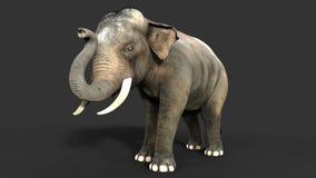 ο τρισδιάστατος ελέφαντας απεικόνισης απομονώνει στο μαύρο υπόβαθρο Στοκ Εικόνες