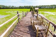 Ο τρόπος είναι ξύλινος στον πράσινο τομέα στη μεσημβρία στοκ φωτογραφίες με δικαίωμα ελεύθερης χρήσης