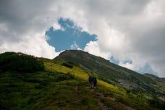 Ο τρόπος στην κορυφή Στοκ φωτογραφία με δικαίωμα ελεύθερης χρήσης