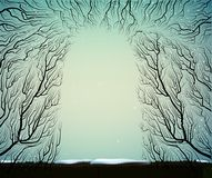 Ο τρόπος στο βαθύ παγωμένο χειμερινό δάσος νεράιδων, σκιές, κλάδοι σκιαγραφεί, μπλε μπλε νεράιδα Στοκ Φωτογραφίες