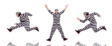 Ο τρόφιμος φυλακών που απομονώνεται στο άσπρο υπόβαθρο Στοκ φωτογραφίες με δικαίωμα ελεύθερης χρήσης