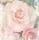 Ο τρύγος λουλουδιών, αυξήθηκε με το υπόβαθρο σύστασης εγγράφου Στοκ Φωτογραφίες