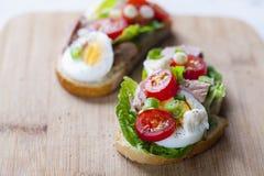 Ο τόνος το σάντουιτς Στοκ Εικόνα