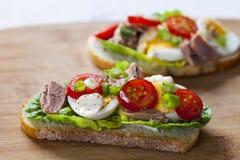 Ο τόνος το σάντουιτς Στοκ Φωτογραφίες