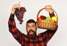 Ο τύπος με τη συγκομιδή Farmer με το συγκινημένο πρόσωπο παρουσιάζει τα φρούτα στοκ εικόνα με δικαίωμα ελεύθερης χρήσης