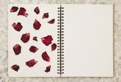 Ο Τύπος ξηρός αυξήθηκε πέταλα λουλουδιών στο λεύκωμα φωτογραφιών με το διάστημα αντιγράφων Στοκ Εικόνες