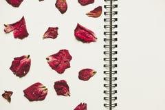 Ο Τύπος ξηρός αυξήθηκε πέταλα λουλουδιών, στο κενό λεύκωμα βιβλίων φωτογραφιών με το διαστημικό, εκλεκτής ποιότητας τόνο αντιγράφ Στοκ Φωτογραφίες