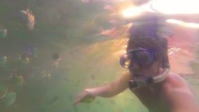 Ο τύπος λούζει στη θάλασσα με τα ψάρια Σκάφανδρο που βουτά στις μάσκες Φως του ήλιου μέσω του νερού Phangan, Ταϊλάνδη φιλμ μικρού μήκους