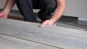 Ο τύπος Handyman παίρνει το φυλλόμορφο πίνακα και τον εγκαθιστά στο πάτωμα απόθεμα βίντεο