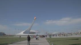 Ολυμπιακός φανός στους Ολυμπιακούς Αγώνες ΧΧΙΙ παγκόσμιου χειμώνα απόθεμα βίντεο
