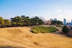 Ολυμπιακό πάρκο της Σεούλ μια φωτεινή ηλιόλουστη ημέρα στοκ εικόνα με δικαίωμα ελεύθερης χρήσης