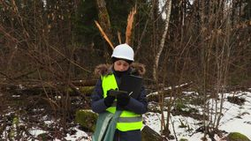 Ο υπάλληλος δασονομίας θηλυκών παίρνει τις εικόνες του σπασμένου δέντρου απόθεμα βίντεο