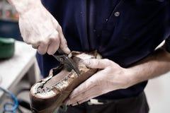 Ο υποδηματοποιός επισκευάζει το παπούτσι δέρματος. Στοκ εικόνες με δικαίωμα ελεύθερης χρήσης