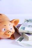 ο υπολογιστής δεσμών μπορεί να αλλάξει την αποταμίευση αποταμίευσης πεννών χρημάτων επιγραφών φακέλων ψυχαγωγίας οικονομίας δολαρ Στοκ εικόνα με δικαίωμα ελεύθερης χρήσης
