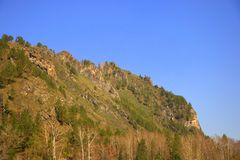 Ο υψηλός λόφος των βουνών Altai που εισβάλλονται με τα σπάνια κωνοφόρα δάση Gorny Altai, Σιβηρία, Ρωσία o στοκ φωτογραφία με δικαίωμα ελεύθερης χρήσης