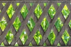 Ο υλικός φράκτης μετάλλων με πράσινο βγάζει φύλλα στο υπόβαθρο Στοκ εικόνα με δικαίωμα ελεύθερης χρήσης
