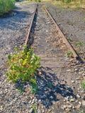 Ο φανός Autogen έκοψε τη ράβδο ραγών στο σάπιο ξύλινο κοιμώμενο Επισκευή της τροχιοδρομικής γραμμής στοκ φωτογραφία