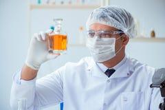 Ο φαρμακοποιός που αναμιγνύει τα αρώματα στο εργαστήριο Στοκ φωτογραφία με δικαίωμα ελεύθερης χρήσης
