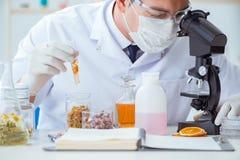 Ο φαρμακοποιός που αναμιγνύει τα αρώματα στο εργαστήριο Στοκ φωτογραφίες με δικαίωμα ελεύθερης χρήσης