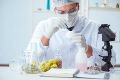Ο φαρμακοποιός που αναμιγνύει τα αρώματα στο εργαστήριο Στοκ Φωτογραφία