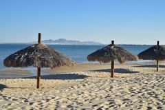 Ο φοίνικας οι ομπρέλες SAN Felipe, Baja, Μεξικό παραλιών Στοκ φωτογραφίες με δικαίωμα ελεύθερης χρήσης