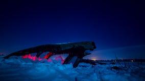 Ο φράκτης πάγου κάτω από το κούτσουρο είναι φωτισμένος με το κόκκινο φως Η περιστροφή του πλανήτη σε έναν χιονισμένο τομέα φιλμ μικρού μήκους