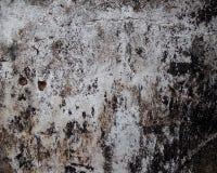 ο φυσικός παλαιός ληφθείς εικόνα τοίχος αστραπής εσωτερικών της Κροατίας εκκλησιών grunge ήταν Στοκ εικόνα με δικαίωμα ελεύθερης χρήσης