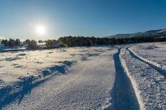 Ο φωτεινός άσπρος ήλιος λάμπει στο δρόμο τομέων και χιονιού Ρωσία, Stary KR Στοκ φωτογραφία με δικαίωμα ελεύθερης χρήσης