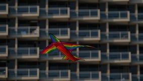 Ο φωτεινός πολύχρωμος ικτίνος το βίντεο αεροπλάνων 4k απόθεμα βίντεο