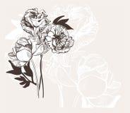 Ο χαραγμένος αφηρημένος κομψός γάμος καρτών λουλουδιών διανυσματικός bakground γιορτάζει τον τρύγο peony απεικόνιση αποθεμάτων