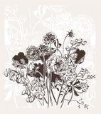 Ο χαραγμένος αφηρημένος κομψός γάμος καρτών λουλουδιών διανυσματικός bakground γιορτάζει το εκλεκτής ποιότητας λιβάδι απεικόνιση αποθεμάτων