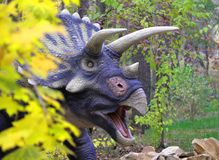 ο χαριτωμένος δεινόσαυρος Triceratops κοιτάζει έξω από πίσω από έναν θάμνο σε ένα πράσινο λιβάδι στοκ εικόνες με δικαίωμα ελεύθερης χρήσης