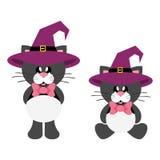 Ο χαριτωμένος Μαύρος γατών κινούμενων σχεδίων με το δεσμό στο σύνολο καπέλων μαγισσών Στοκ Φωτογραφίες