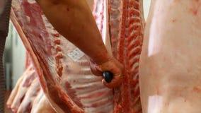 Ο χασάπης τεμαχίζει τα σφάγια χοιρινού κρέατος στο εργαστήριο κρέατος απόθεμα βίντεο
