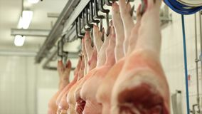 Ο χασάπης τεμαχίζει τα σφάγια χοιρινού κρέατος στο εργαστήριο κρέατος φιλμ μικρού μήκους