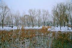 Ο χειμερινός έμμετρος λόγος του Sui και των δυναστειών του Tang στοκ εικόνα με δικαίωμα ελεύθερης χρήσης