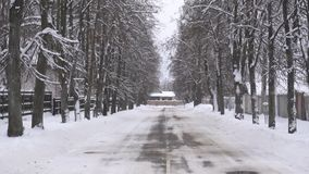 Ο χειμερινός δρόμος στις πλευρές των οποίων τα δέντρα αυξάνονται, υπόβαθρο, αντιγράφει το διαστημικό, αργό MO, υπαίθριο φιλμ μικρού μήκους