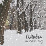 Ο χειμώνας έρχεται μπλε snowflakes ανασκόπησης άσπρος χειμώνας Στοκ Εικόνα