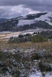 Ο χειμώνας έρχεται στον κίτρινο Stone Στοκ φωτογραφίες με δικαίωμα ελεύθερης χρήσης