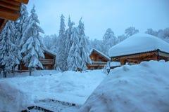 Ο χειμώνας είναι παντού στοκ εικόνες με δικαίωμα ελεύθερης χρήσης