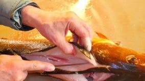 Ο χειριστής εφαρμόζει τη ραχιαία περικοπή με το πολύ αιχμηρό μαχαίρι Viscera ελέγχου χεριών και χωρισμός των λωρίδων από τα κόκκα απόθεμα βίντεο