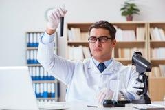 Ο χημικός μηχανικός που εργάζεται στα δείγματα πετρελαίου στο εργαστήριο Στοκ φωτογραφίες με δικαίωμα ελεύθερης χρήσης
