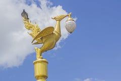 Ο χρυσός λαμπτήρας κύκνων Στοκ εικόνα με δικαίωμα ελεύθερης χρήσης