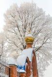Ο χρυσός θόλος της εκκλησίας ενάντια στο δέντρο στο χιόνι στοκ εικόνα