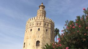 Ο χρυσός πύργος απόθεμα βίντεο