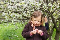 Ο χρόνος άνοιξη… αυξήθηκε φύλλα, φυσική ανασκόπηση Λίγο αστείο κορίτσι (4 έτη) κοντά στα ανθίζοντας δέντρα Στοκ Φωτογραφίες