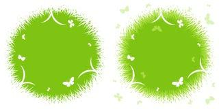 Ο χρόνος άνοιξη… αυξήθηκε φύλλα, φυσική ανασκόπηση Στοκ Φωτογραφίες