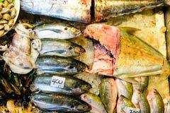 Ο χρόνος για τρώει το σύνολο ακατέργαστων θαλασσινών προετοιμαμένος για ψημένος στη σχάρα Στοκ Εικόνα